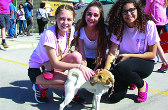 Gulf Weekly A walk for man's best friend